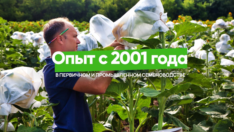 Опыт в семеноводстве с 2001 года